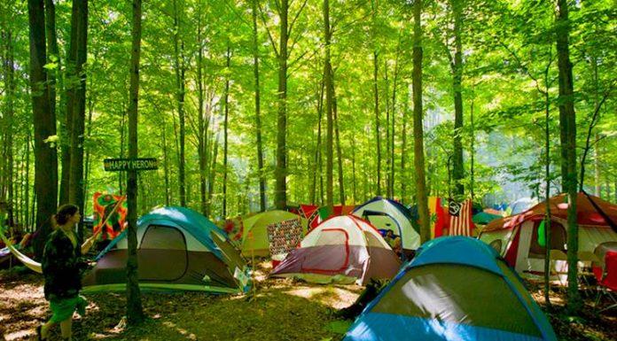 Türkiye'deki Kamp Alanları